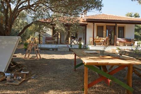 Salıncak Houses - Ovabükü, Mesudiye, Datça