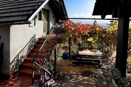Vineyard cottage Verček