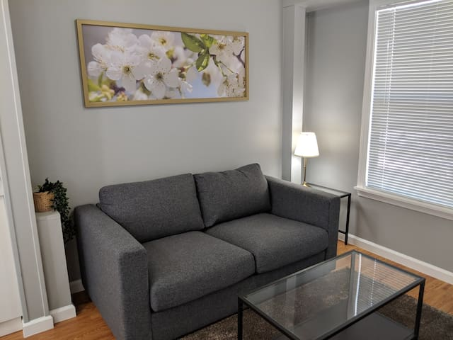 Newly Remodeled Hyde Park Studio
