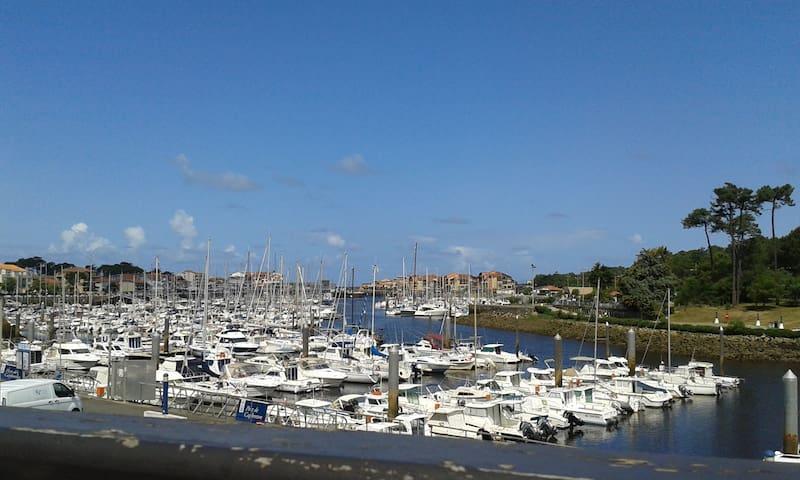 Appart vue directe sur le port de plaisance, 3*