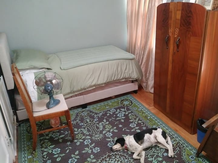 Organic one-person bedroom, pet-friendly & haunted