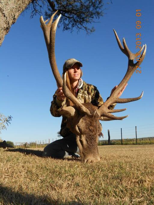 great animal hunting