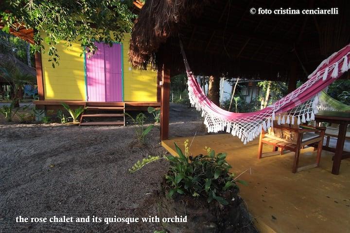 Vegethus Casinha Amarela - vegan island retreat (1