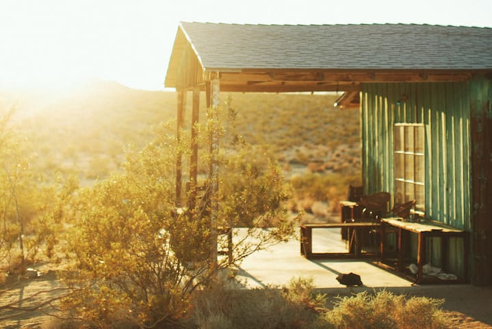Joshua Tree Homesteader Cabin  - Joshua Tree