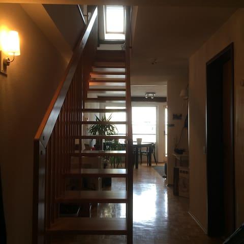 Altbauwohnung im Stadtzentrum - Feldkirch - Apartamento