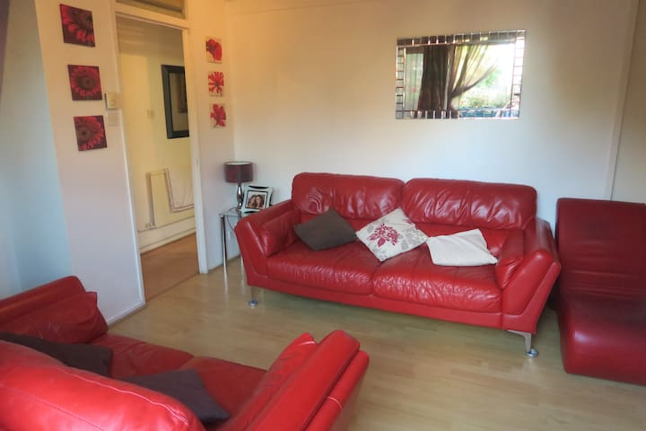 Cosy Air Bed Mattress In Living Room, North London - London - Apartment