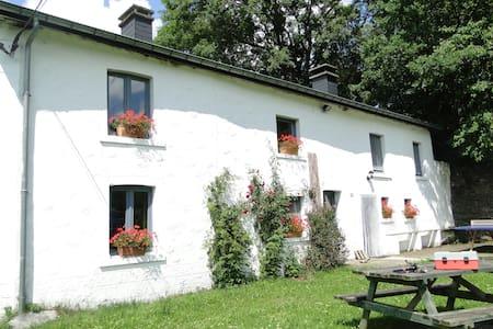 La Fontaine - Wibrin, Houffalize - Cabane