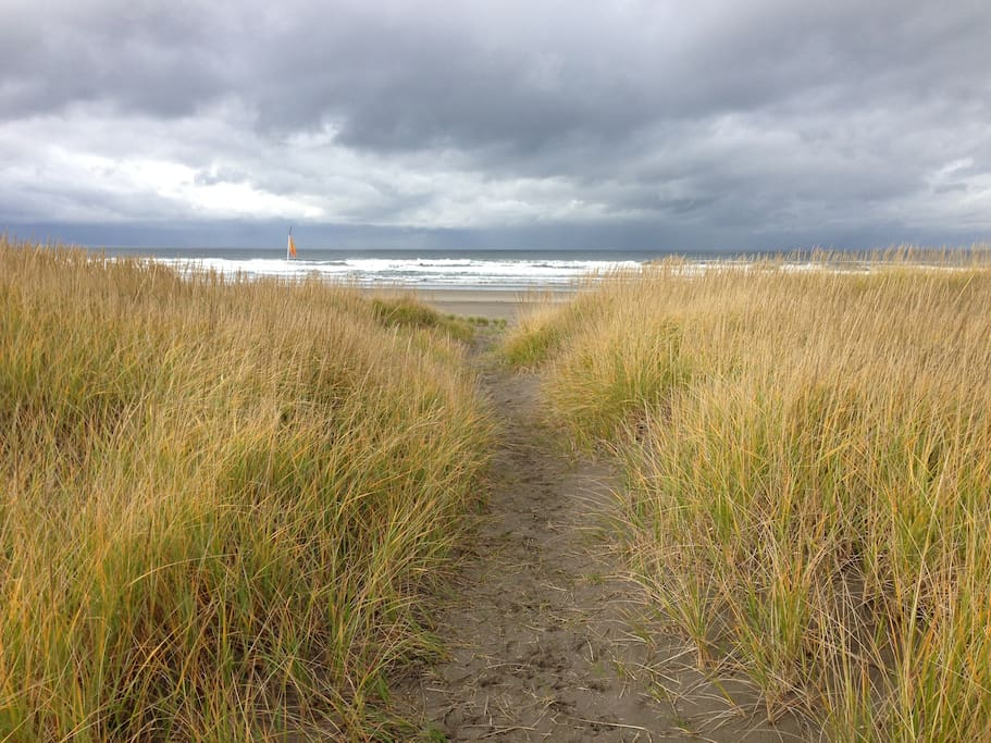 Our path through the dunes to the beach
