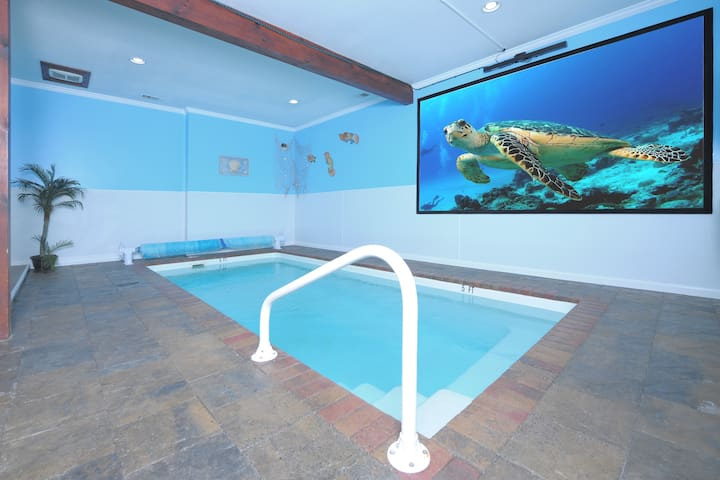 """Pool room with 125"""" projector screen"""