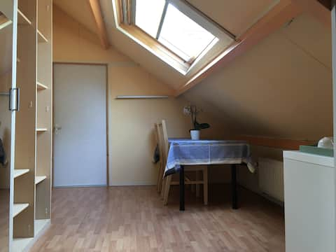 Private room near The Hague