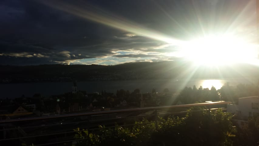 180° view over Zurich lake with garden & terrace