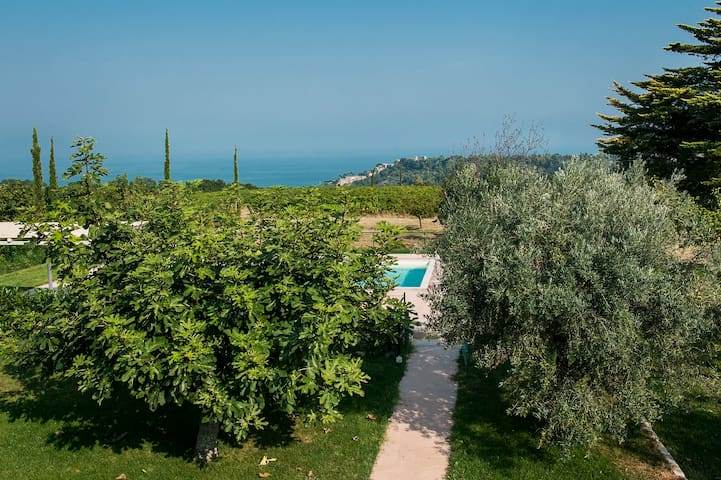 house with pool,hilltop,near the sea, vineyards