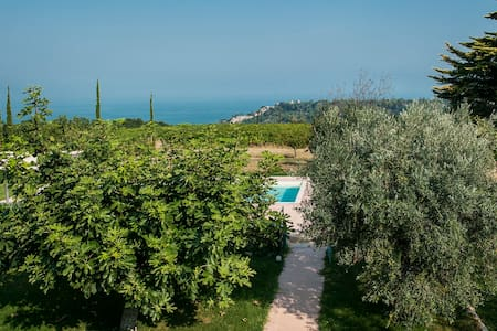 house with pool,hilltop,near the sea, vineyards - Cupra Marittima - Hus