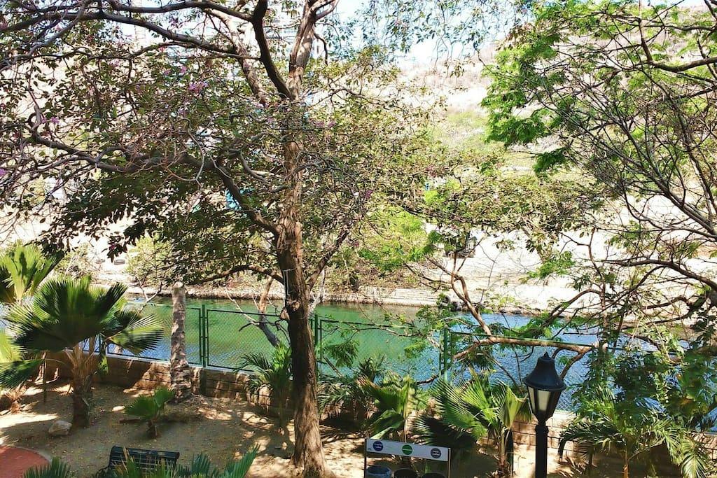 Vista desde el apartamento al canal de la marina y la reserva natural de iguanas