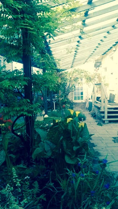 Beautiful atrium garden views