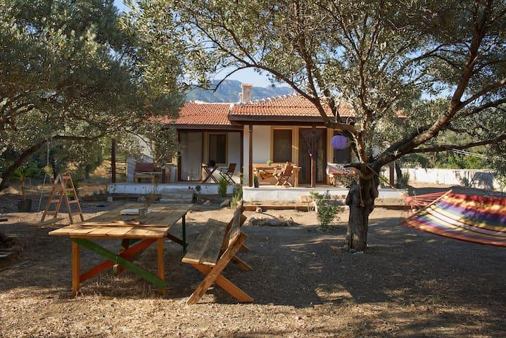 Salıncak Houses / Doğu - Datça/Muğla