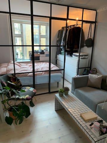 Apartment in Vesterbro