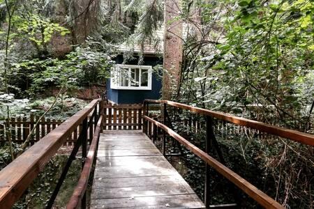 Fauna Erdei Vendégház / Fauna Guesthouse