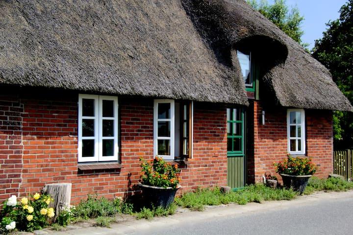Erholung im Reetdachhaus auf der Insel Pellworm - Pellworm - House