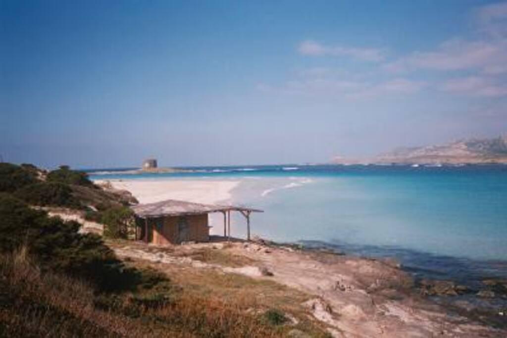 Foto della spiaggia La Pelosa, distante 2 km dalla casa