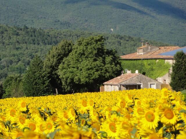 Gîte les Tournesols - Reillanne - บ้าน