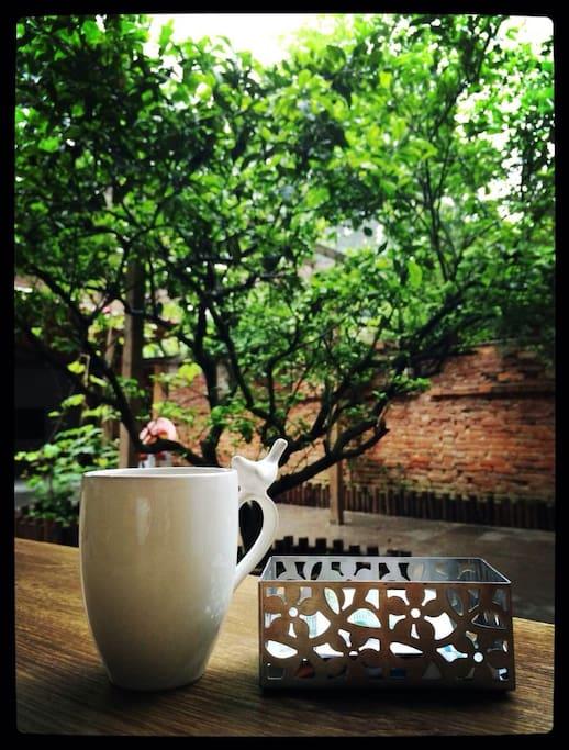斑驳红墙,桔子树,葡萄藤,咖啡香