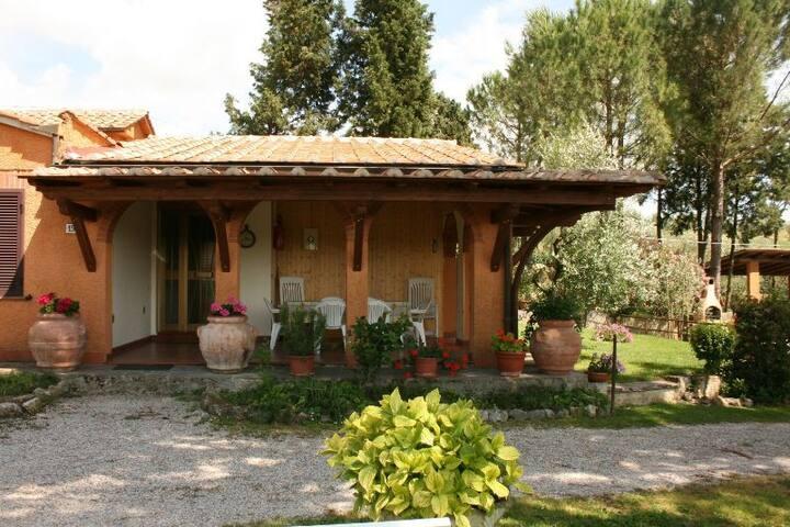 IL SALICE - AGRITURISMO MENCHETTI - Foiano della Chiana - Appartement