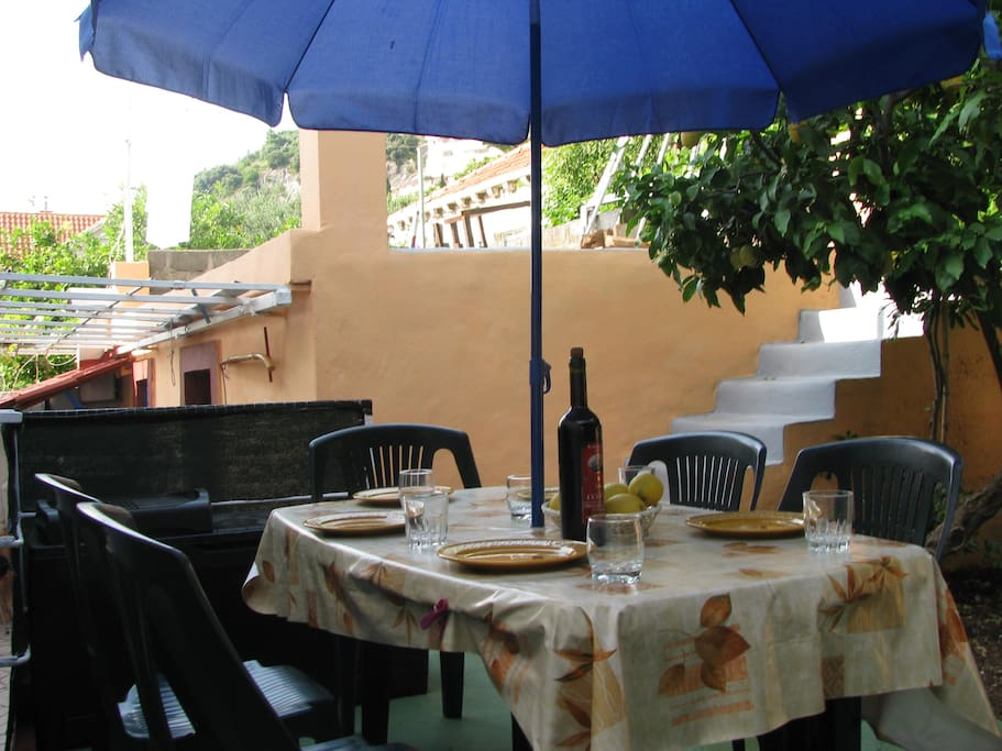barbecue corner and table in the garden under lemon tree