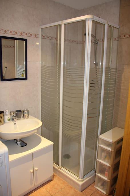 Salle de bain : machine à laver, sèche cheveux, fer à repasser, linge de toilette