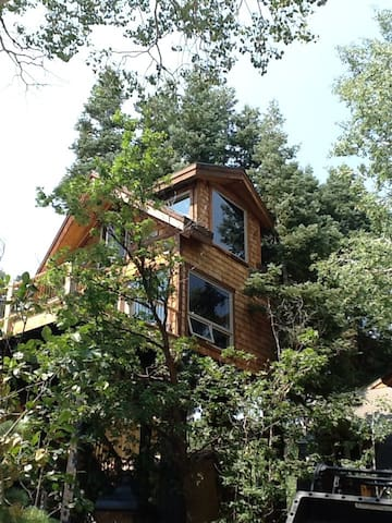 Treehouse above park city UT. - Park city - Hus i træerne