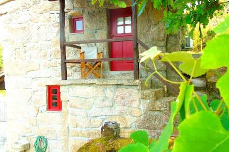 Casa da Carvalheira- Miradouro e terraço privativo