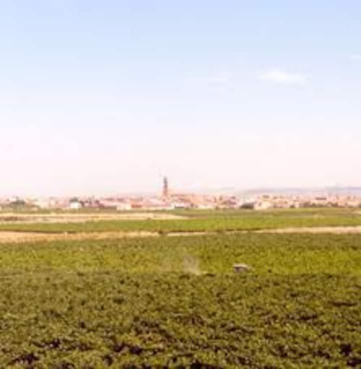 Casa en Aldeanueva de Ebro