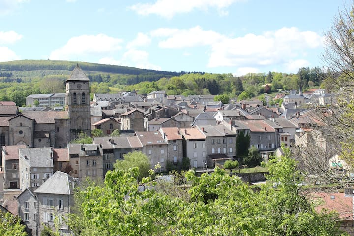 Eymoutiers - general view