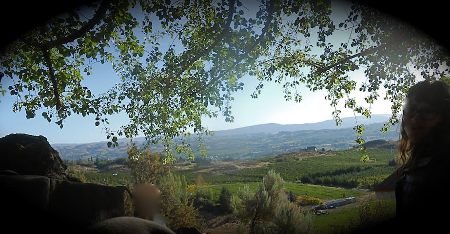 Stoney Ridge , Eco-Friendly Secret Gardens Hideout - Yakima - Villa
