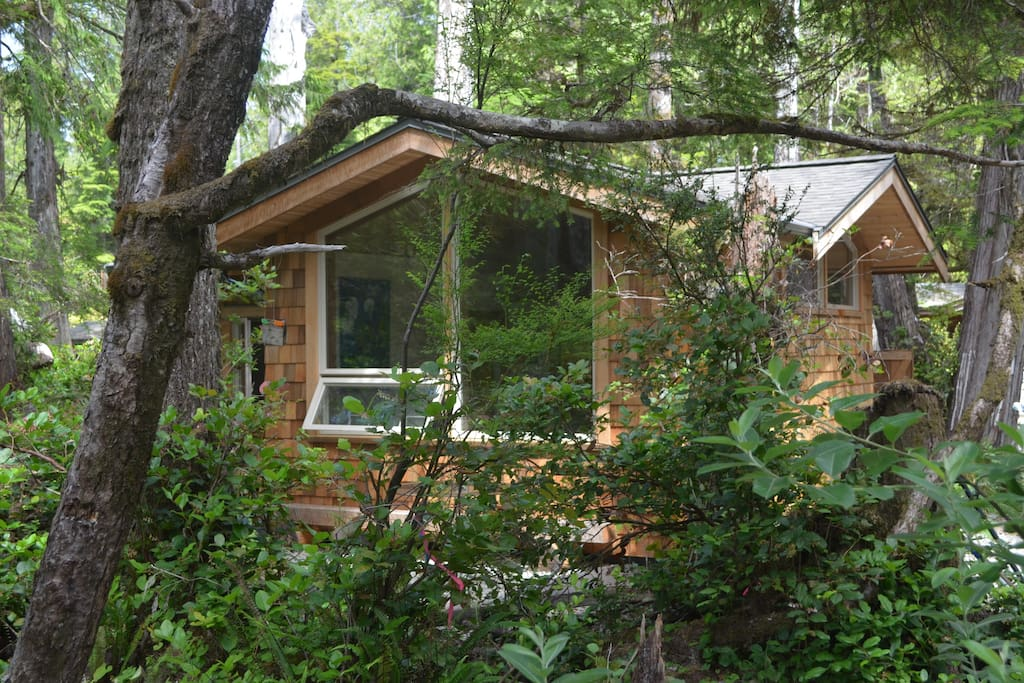 casita tofino cabin near beaches cottages for rent in. Black Bedroom Furniture Sets. Home Design Ideas