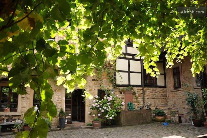 Erleben Sie die charmante Pfalz - Neustadt an der Weinstraße - บ้าน