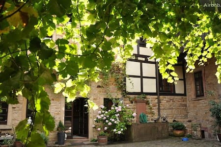 Erleben Sie die charmante Pfalz - Neustadt an der Weinstraße - Rumah