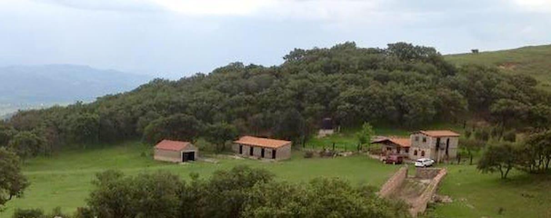 Cabaña de adobe en la Sierra. - Nuevo Valle de Moreno - Houten huisje