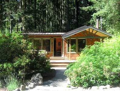 Creek House - House