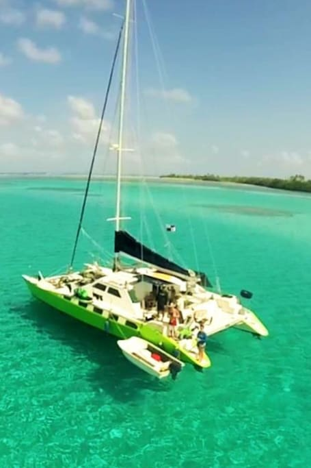 52 foot performance catamaran, super spacious with expansive bay views swim with the Dolphins and sea turtles our neighbors.