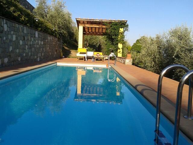 casa gialla 2 - Lucca - House