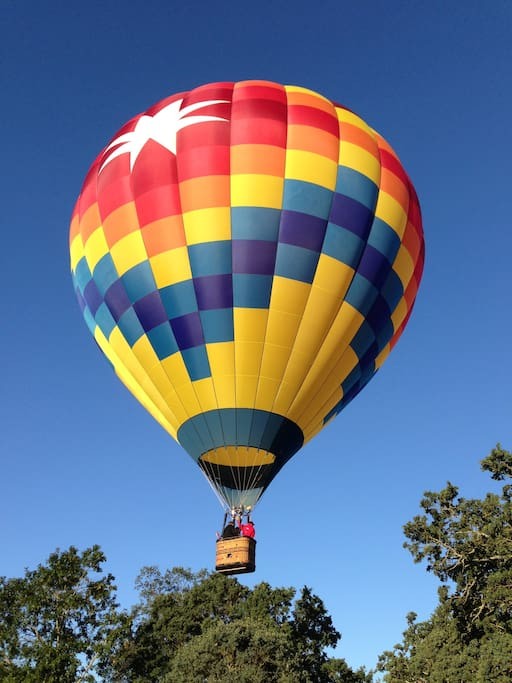 Can see the Hot Air Balloon festival out the Pines window, facing west, overlooking the forest and coastal range.