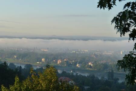 Beste Aussicht im schönsten Viertel von Dresden - Dresden - Villa