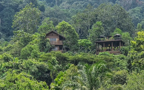 Templer Park Rainforest Retreat - Villa