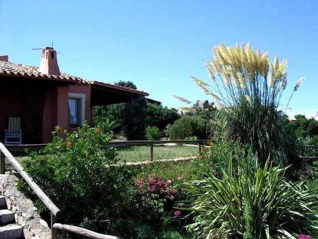 Villa fine a Santa Teresa Gallura - Olbia Tempio - Hus