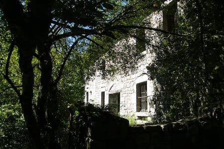Un moulin en pleine nature - Saint-Avit-de-Tardes - Casa