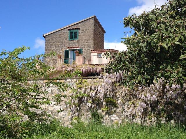 Villa Conola_Turismo Rurale - Massa Lubrense - Bed & Breakfast