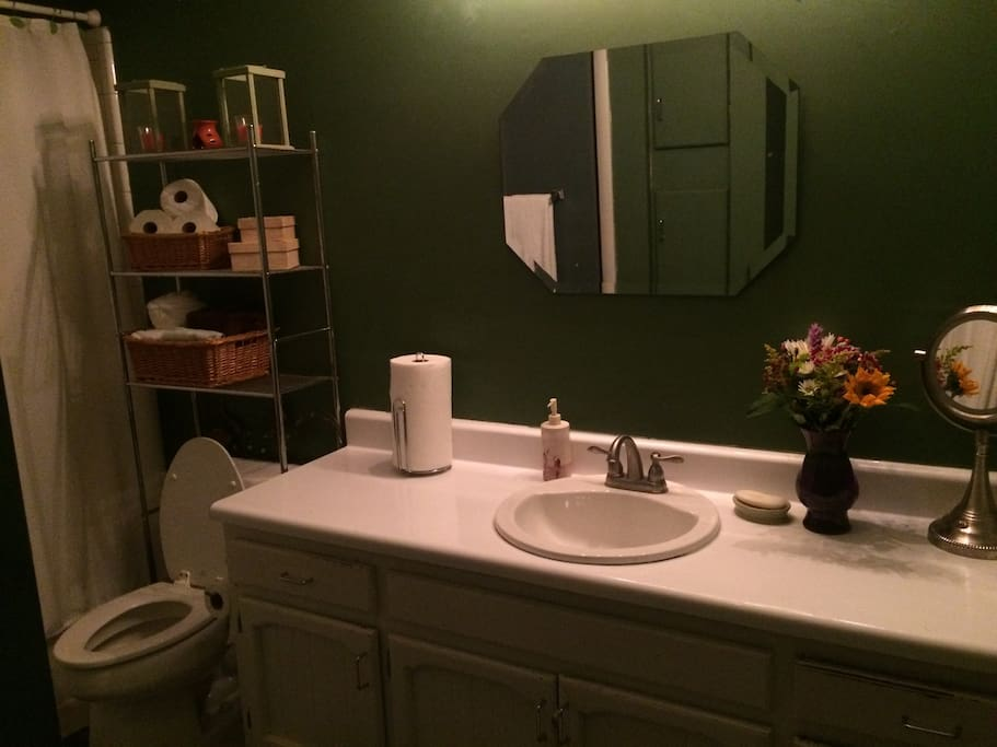 Nice private master bathroom view1