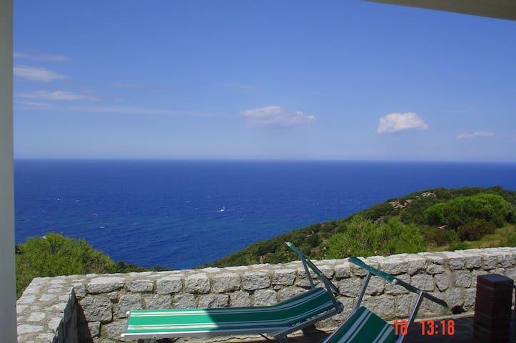 isola d'Elba  nella natura  - Zanca - Departamento