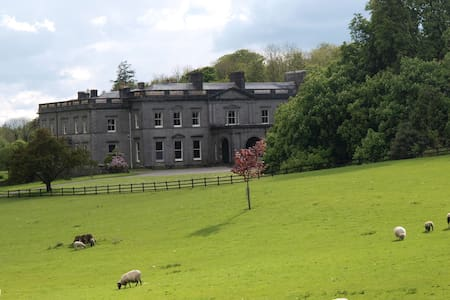 Temple House - Templehouse Demesne - Bed & Breakfast
